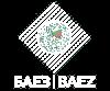 logo company baez